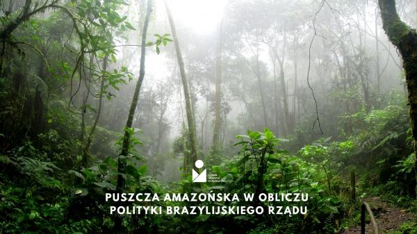 Puszcza amazońska w obliczu polityki brazylijskiego rządu